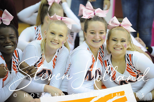 Cheer: Broad Run Believe in a Cure -  Mountain View 10.17.2015 (by Steven Holland)