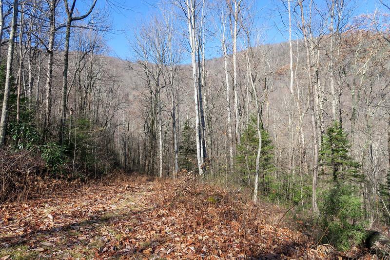 Seniard Ridge Trail -- 3,580'