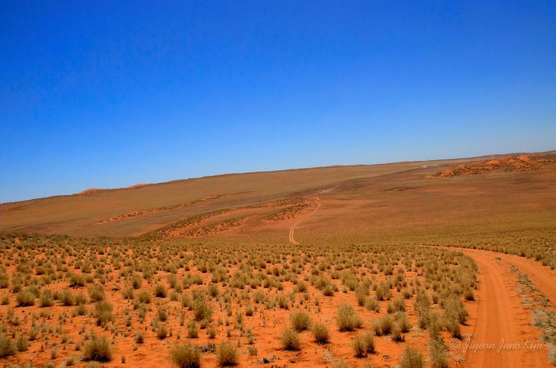 Namibia Desert--5.jpg