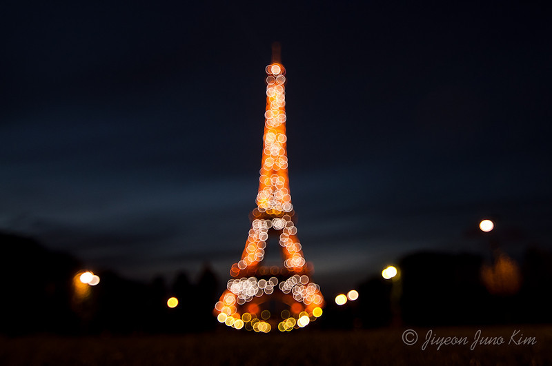 The Eiffel Tower from Champ de Mars