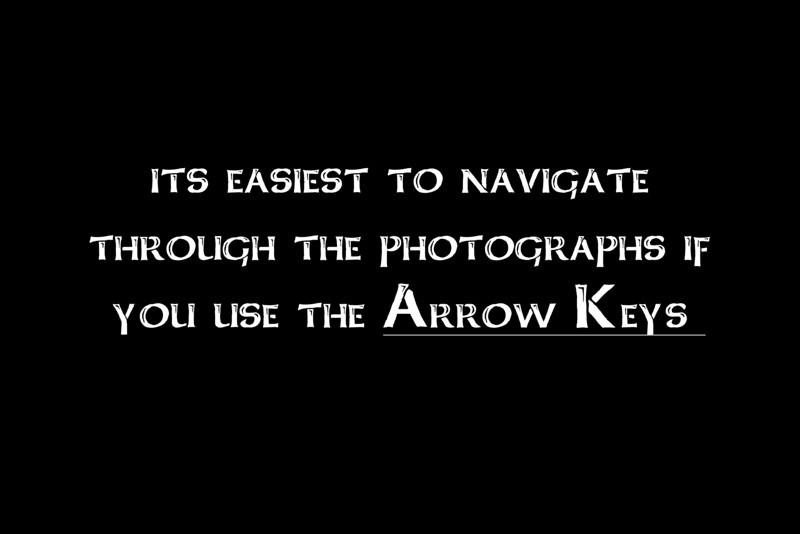1 - Arrow Keys1.jpg