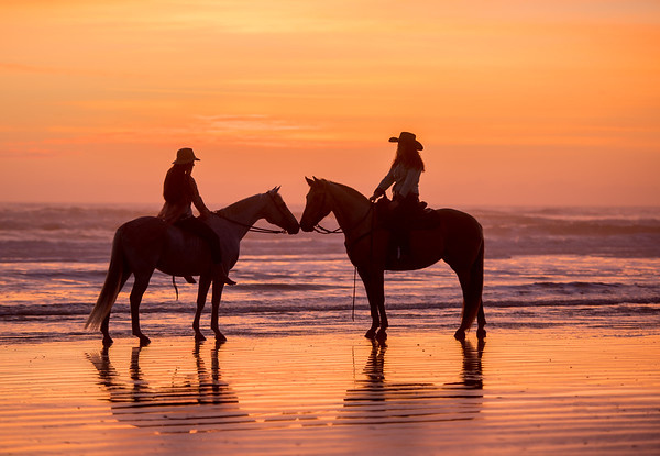 St Augustine Horses on the Beach Workshop - 2018