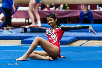 HS Sports - Sun Prairie Gymnastics Conference [d] Feb 17, 2018