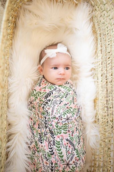 BabyMorrill-3.jpg