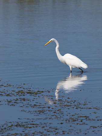 Monterey 6-8 Oct 2012