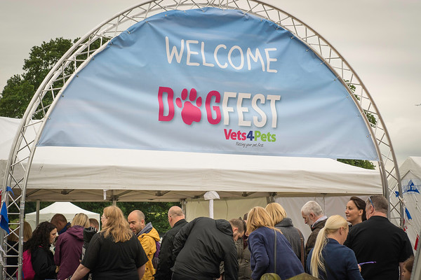 Official Photographer at Dogfest 2016