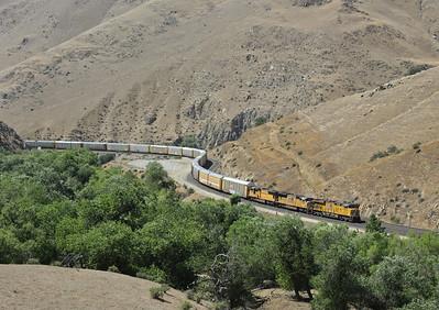 California: Tehachapi north slope, 2013