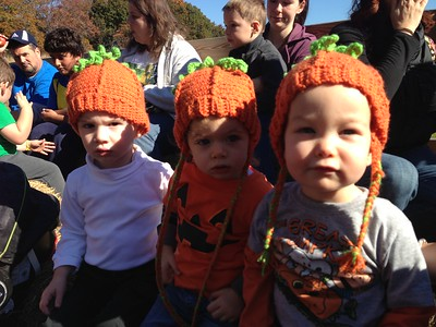 Pumpkin Picking 2012