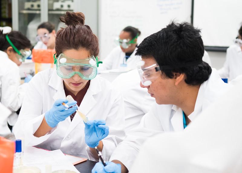 Nehemias Flores and Haeli Hair examine tube sample in Biology.