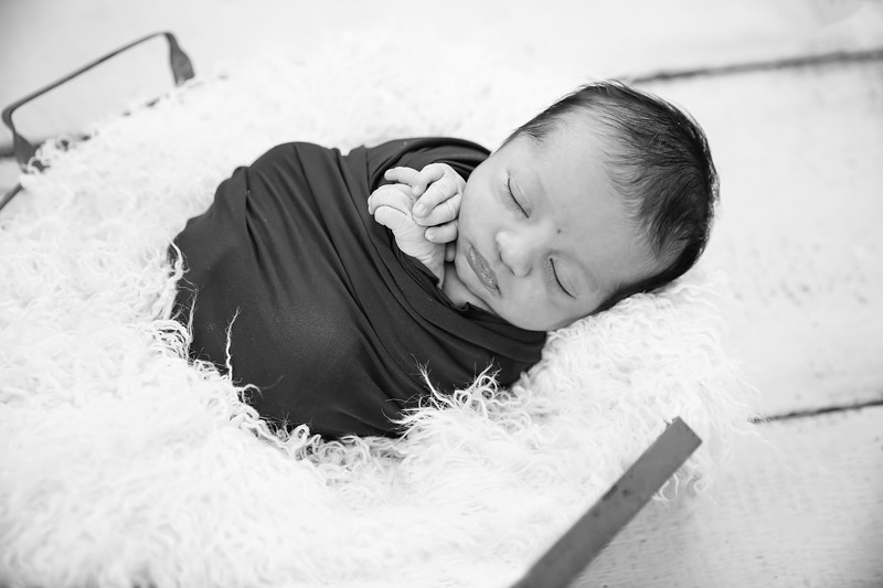 newport_babies_photography_newborn-6576.jpg