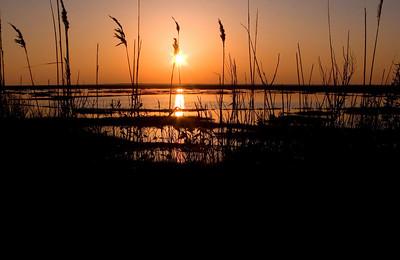 Great Bay Sunset 12/31