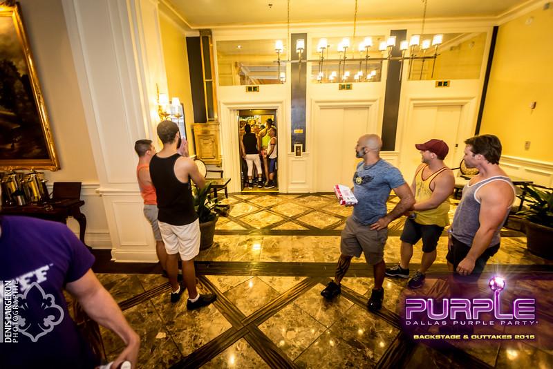 2015-Purple--8344.jpg