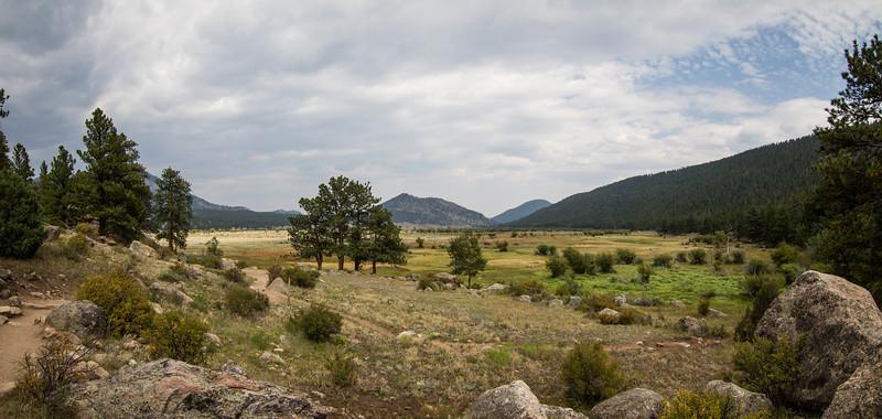 cub_lake_trail_meadow.jpg