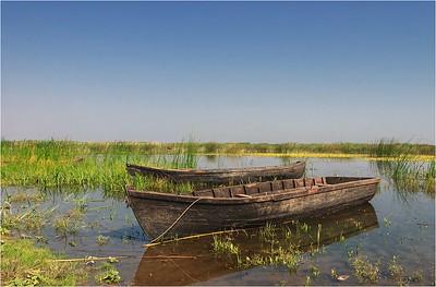 Danube Delta - summer trips