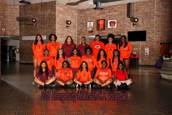 2017 Varsity Volleyball
