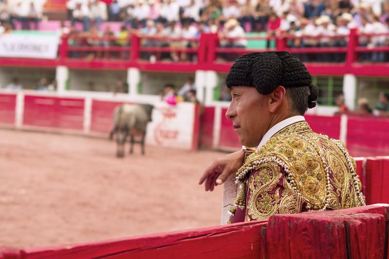 Toros San Buenaventura 2014 045.jpg