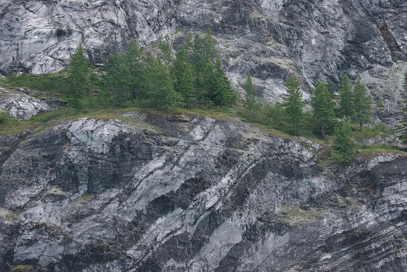 beautiful markings in the rock