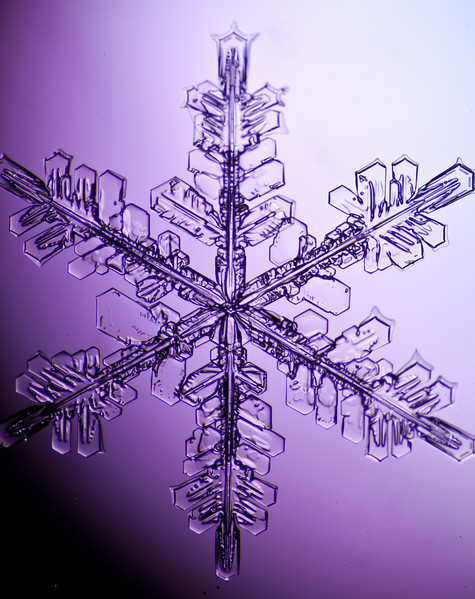 snowflake-3048-Edit.jpg