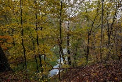 Raccoon State Park--Audubon Trail Scenes