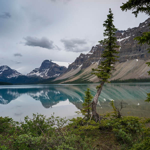 Reflection of mountains in Bow Lake, Banff National Park, Alberta, Canada