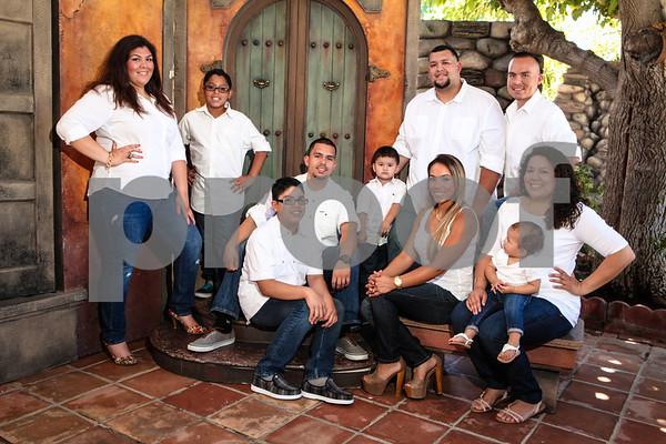 Palma Family
