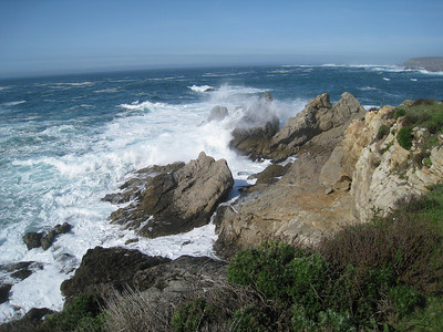 Point Lobos 02-13-2010