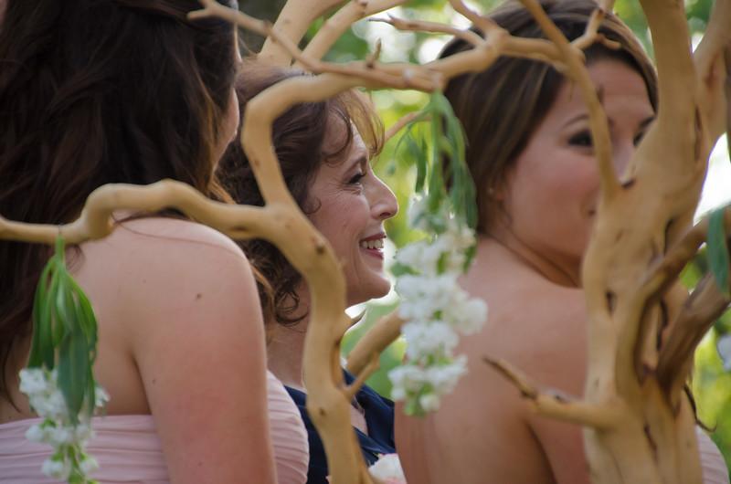 Andrew & Stefani Wedding Ceremony 2014-BJ1_5169.jpg