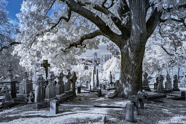 Trinity Church Cemetery in IR 2019
