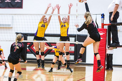 2015 High School Volleyball