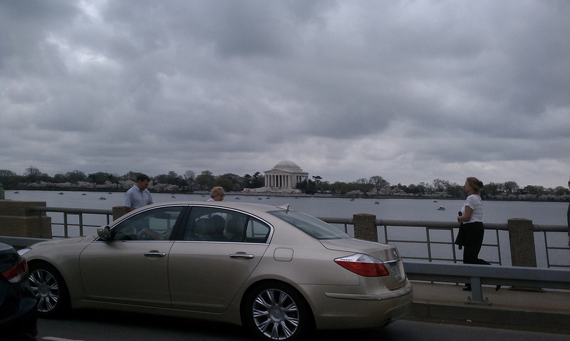 I may not always enjoy coming to dc. but at least it's pretty this week.