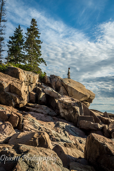 11- Otter Point, Acadia National Park, Maine.JPG