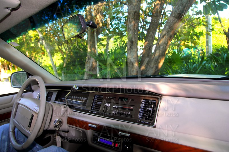 car retro interior in the jungle in Mayan riviera