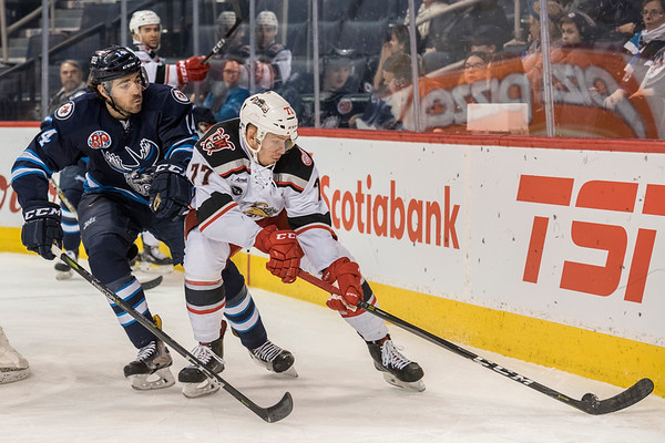 DAVID LIPNOWSKI / WINNIPEG FREE PRESS  Manitoba Moose Jake Kulevich (#14) jostles for the puck with Grand Rapids Griffins  Evgeny Svechnikov (#77) during first period action at Bell MTS Place Wednesday January 10, 2018.