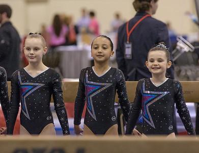 2014 TN State Gymnastics Meet-Prep Gold