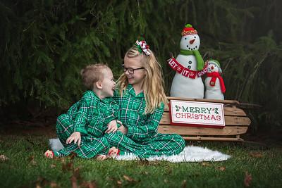 Fitzgerald - Christmas Mini 2017