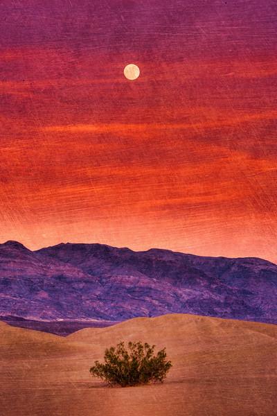 Monrise Over Mequite Dunes