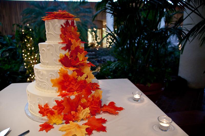 Emmalynne_Kaushik_Wedding-818.jpg