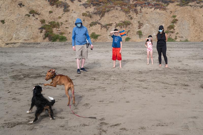 ocean beach quarantine 1159455-8-20.jpg
