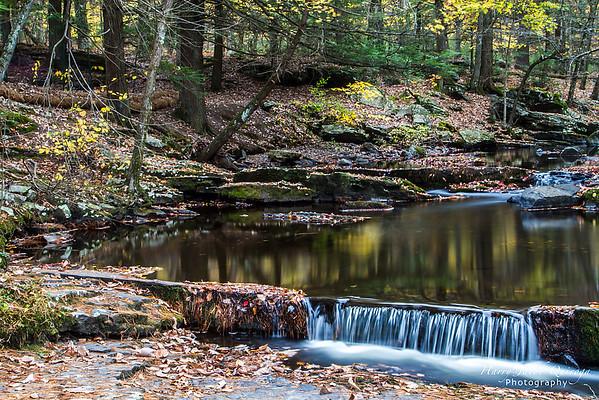 2013 Fall Photos - Pennsylvania