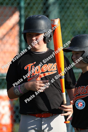 12U - Darien Dragons vs Tigers Baseball