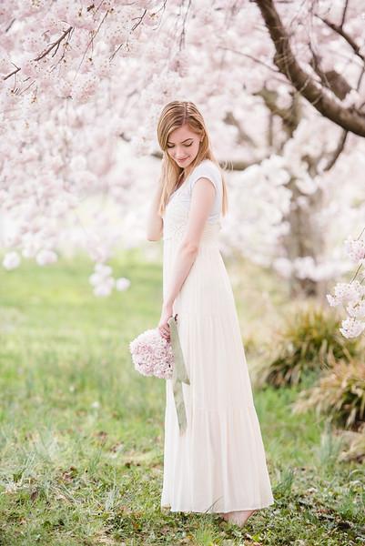 Cherry Blossoms (179 of 182).jpg