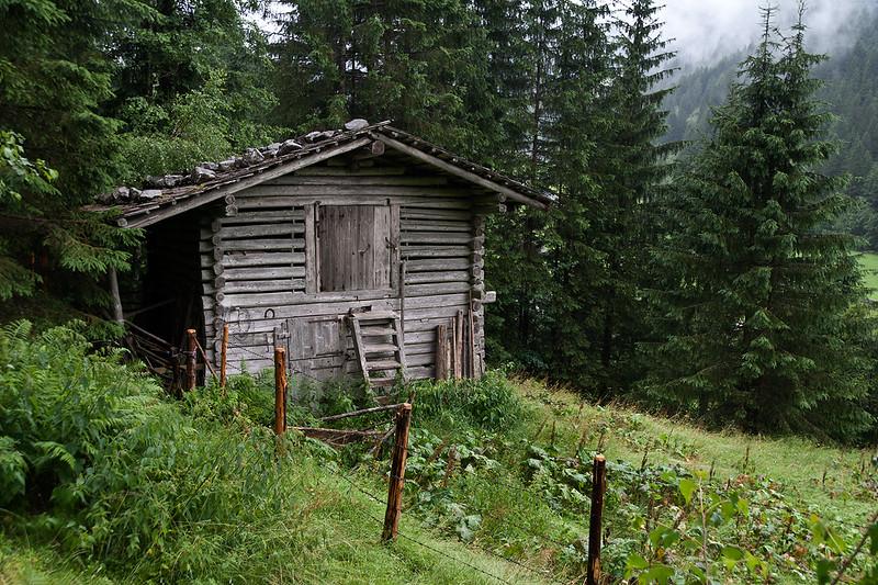 Forest_Hut_mg_1318.jpg