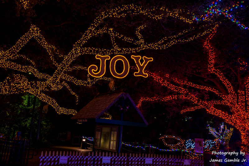 Houston-Zoo-Lights-3156.jpg