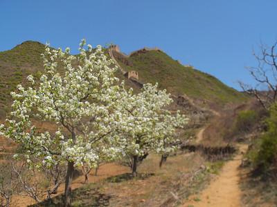 qiangzilu Great wall hiking 1 day