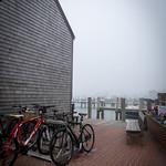 05-26-21 Foggy Day