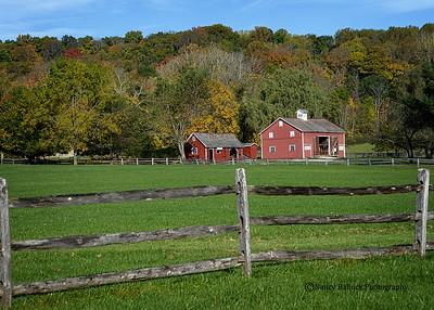 Hale Farm Harvest Festival October 2014