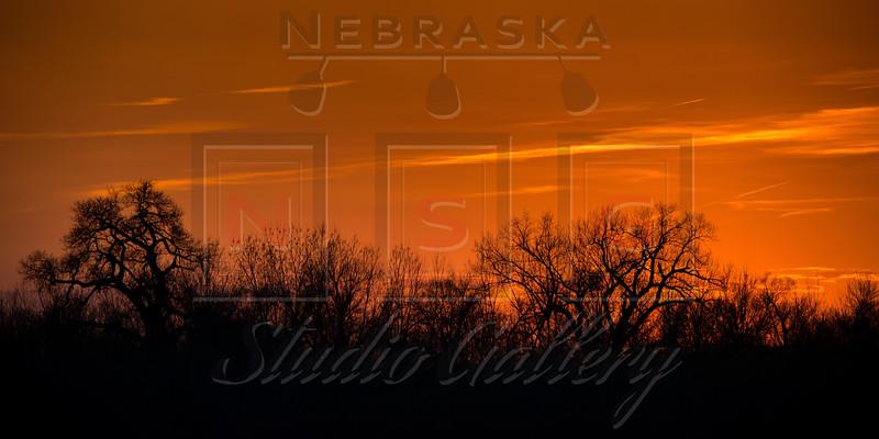 Nebraska Studio Gallery  Summer  Collection