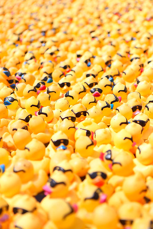 3rd Annual Ducky Derby at City Place 2015