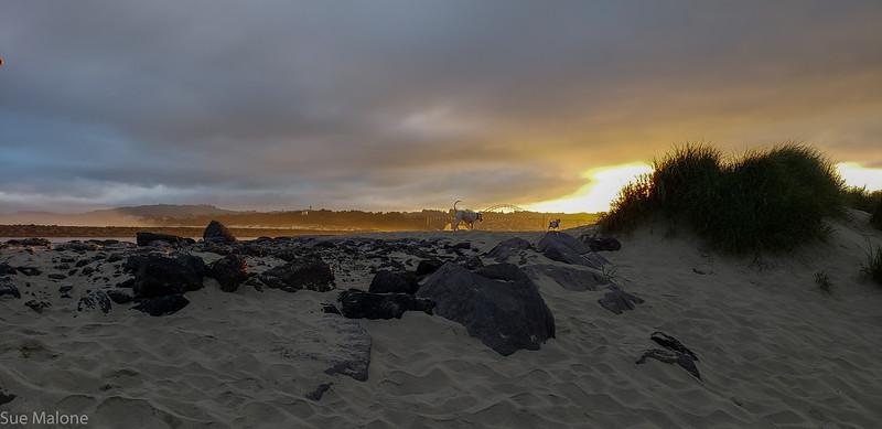 Beach sunrise-16.jpg
