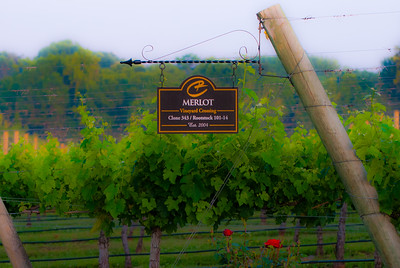 Lexington, NC and Childress Winery